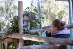Via-Travel-2-Australian-Wildlife-Park