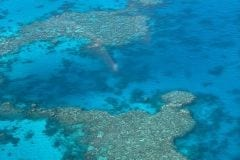 Copy-of-Great-Barrier-Reef-min