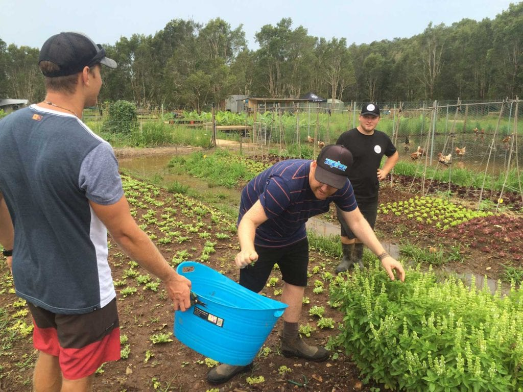 Organic Farm Experience - Via Travel Australia